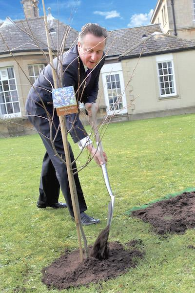 David-Cameron-TGO-NHS-Forest-tree-planting